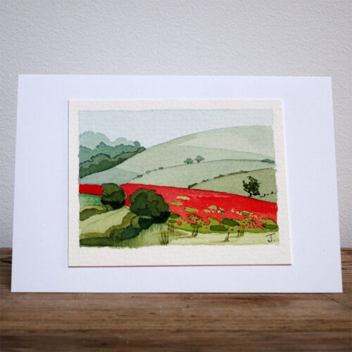 Field of poppies - Original Watercolour Painting by Jessica Coote